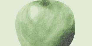 Cours particuliers pomme granny peinture aquarelle photoshop