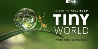Documentaires animaliers appletv TINYWORLD